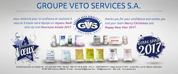 Happy New Year 2017 - Groupe Veto Services S.A.